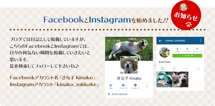 FacebookとInstagramを始めました!!